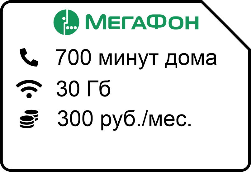 Federalnyj domashnij 300 - Мегафон