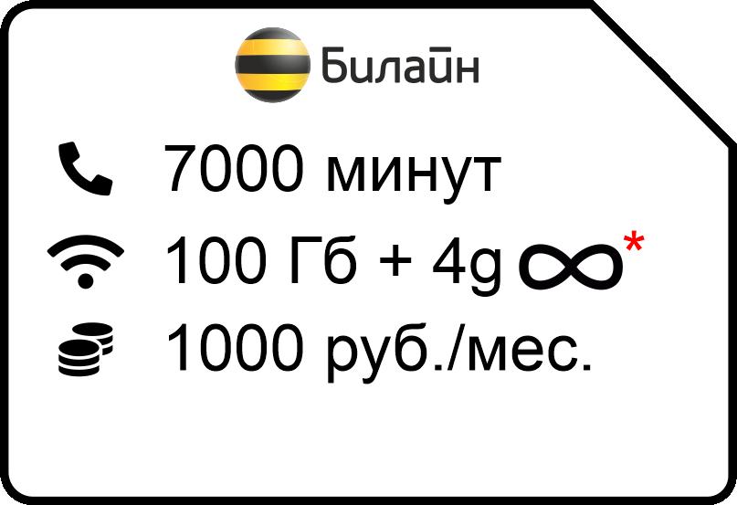 Kljuchevoj 10004g 1 - Билайн
